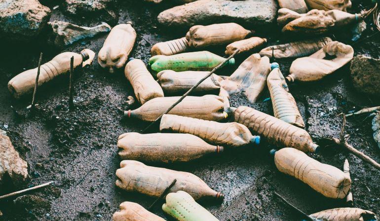 Journée de l'environnement : Prose épistolaire rimée du Dodo aux Mauriciens