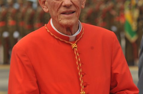 Cardinal Piat 3