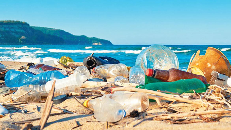 Le plastique à usage unique, un poison pour tous !