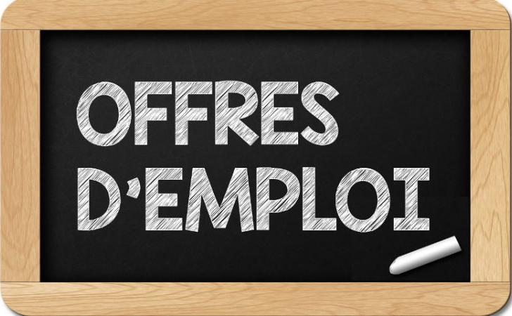 Secteur public : des offres d'emplois disponibles